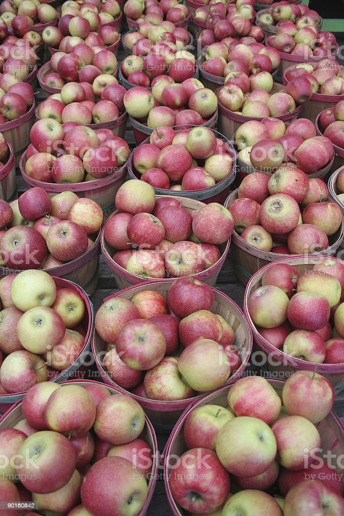Apples-A-Plenty stock photo