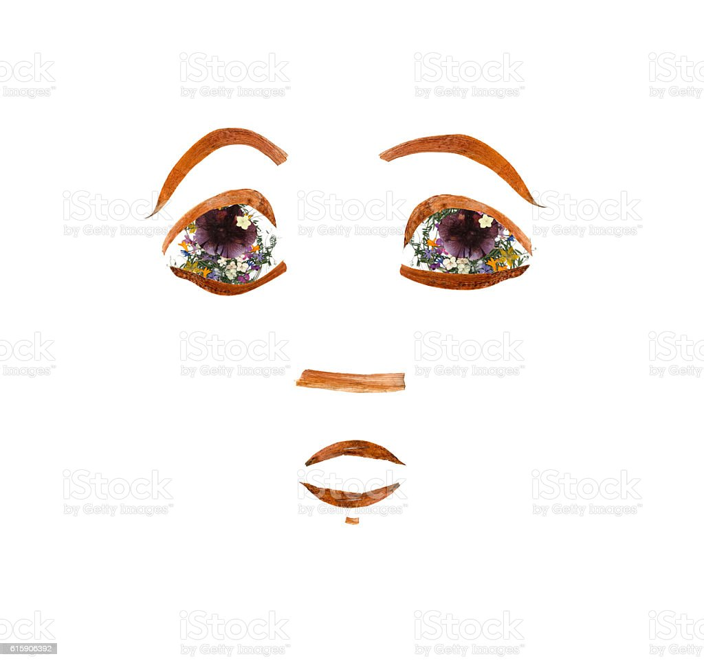 application, face made of dried pressing bright flowers stock photo