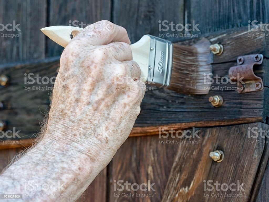 Applying wood preservative on shed door. stock photo