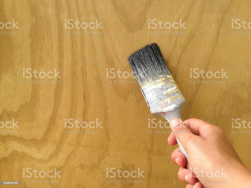 Applying woodstain to plywood with an old paintbrush stock photo