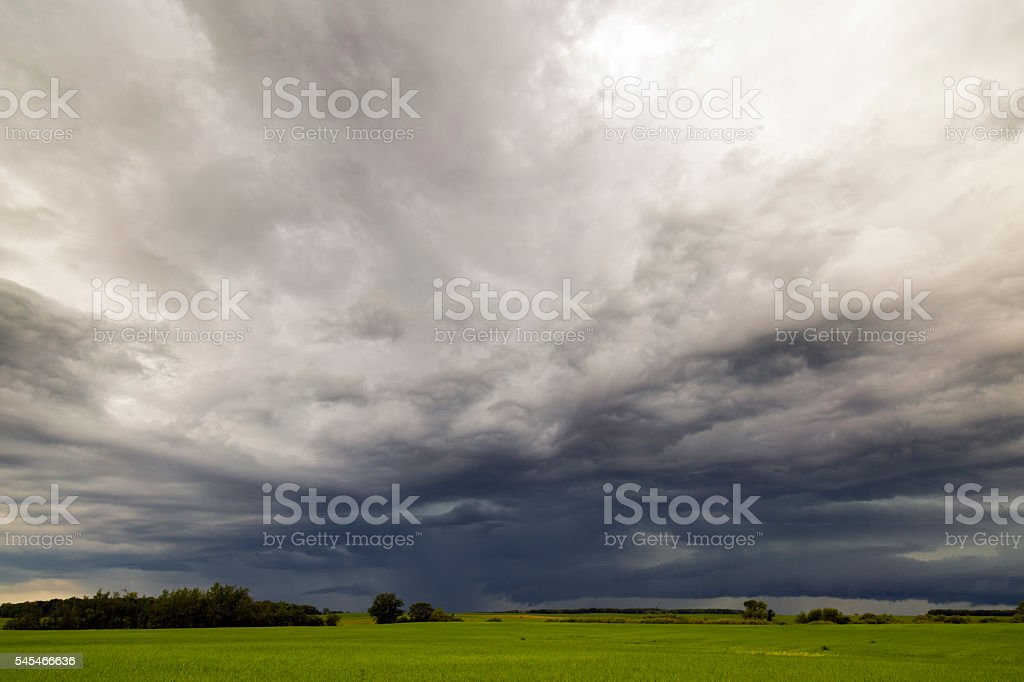 Approaching Storm Over Organic Grain Field stock photo