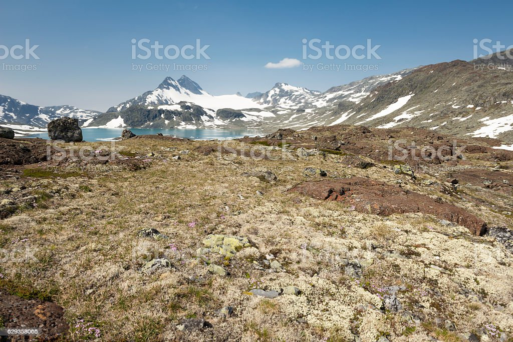 Approaching the Uranos Massif of Jotunheimen National Park in July stock photo