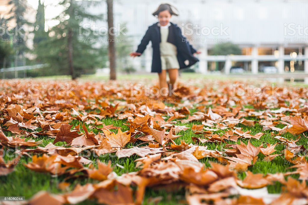 appy little girl playing with autumn leaves in the park stock photo