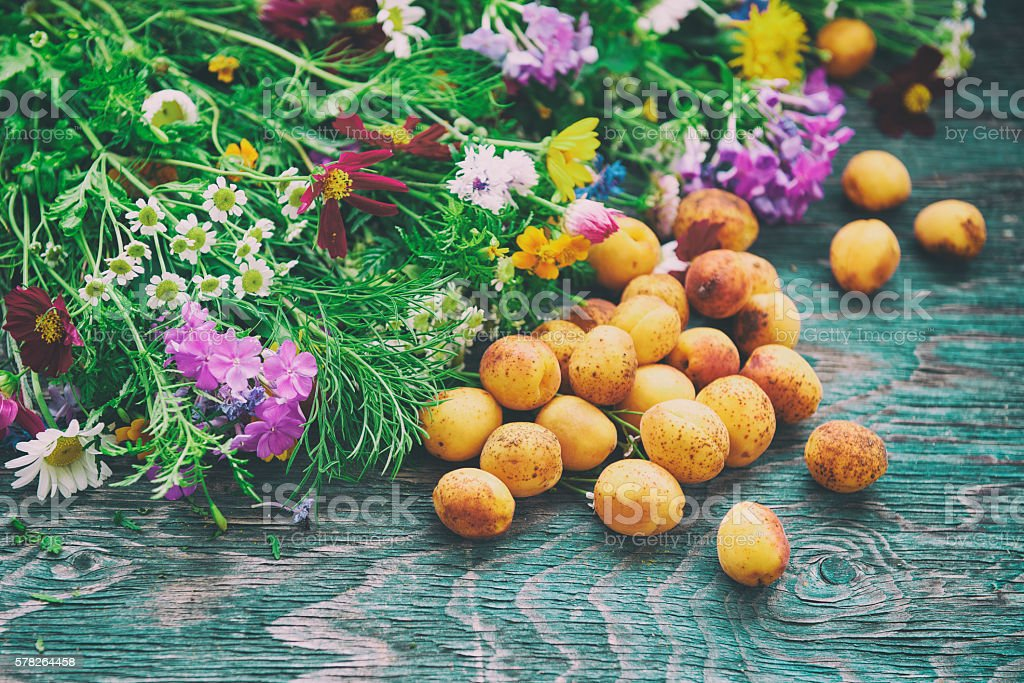 Apricot and flowers stock photo