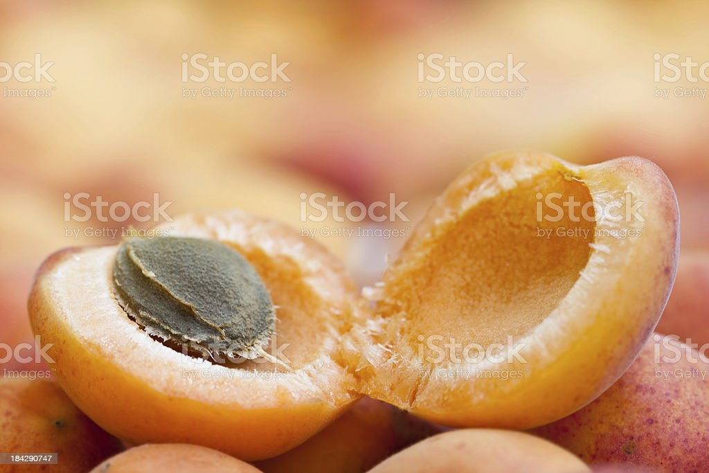 Apricot Close Up stock photo