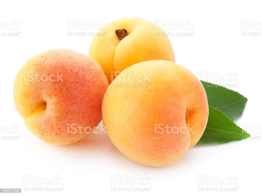 Apricot fruits stock photo
