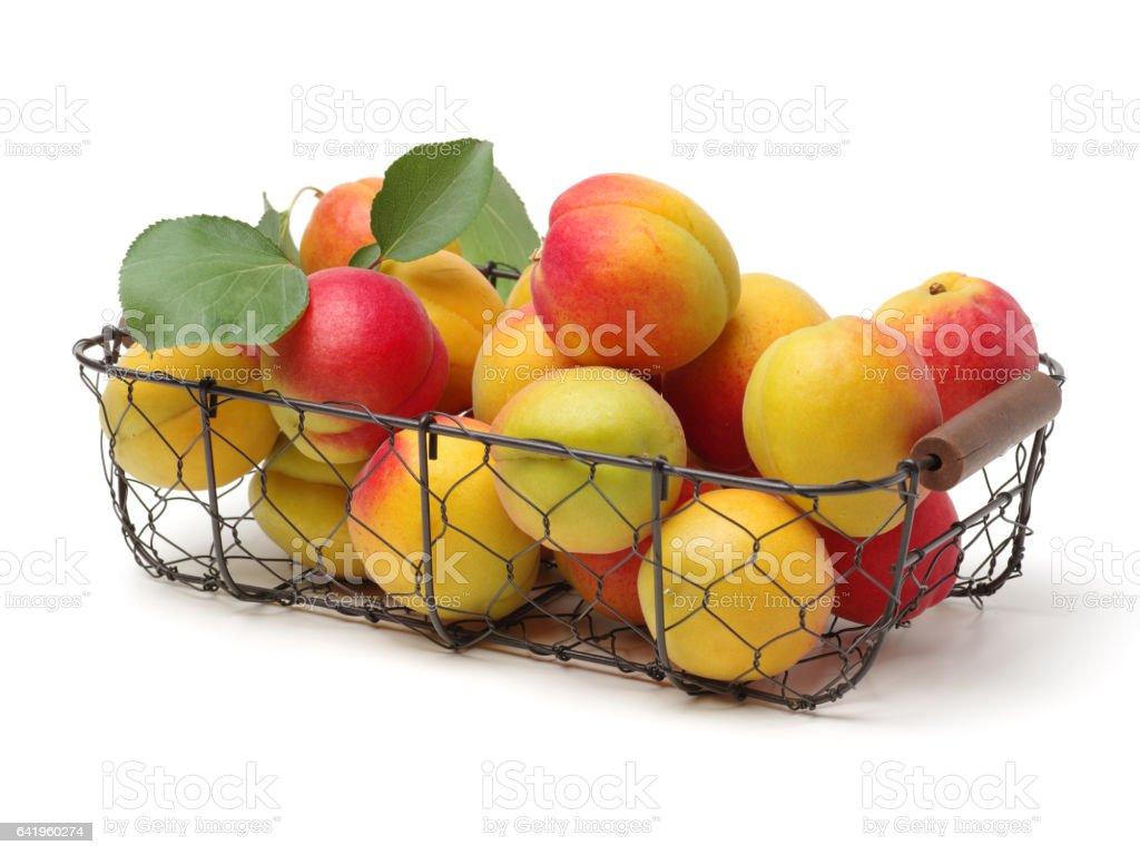 Apricot isolated on white background stock photo