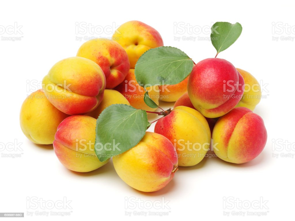Apricot   isolated on white background stock photo