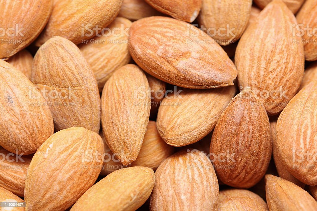 Apricot kernels royalty-free stock photo