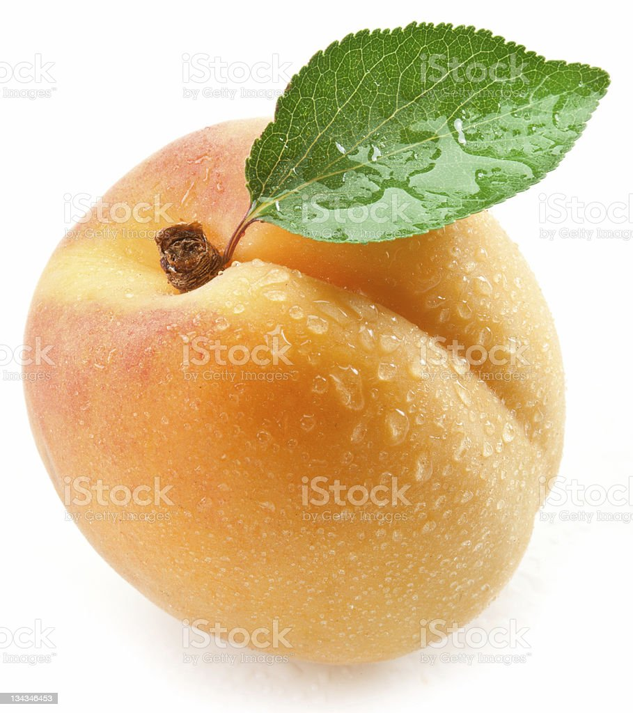 Apricot with leaf on a white background. stock photo