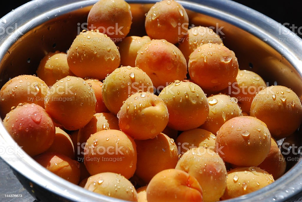 apricots 5 royalty-free stock photo