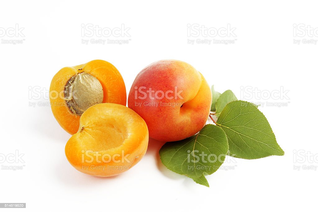 Apricots and leaves on white background stock photo