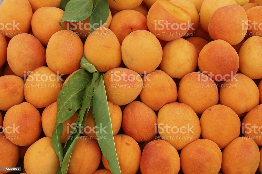 Apricots at a farmers market royalty-free stock photo