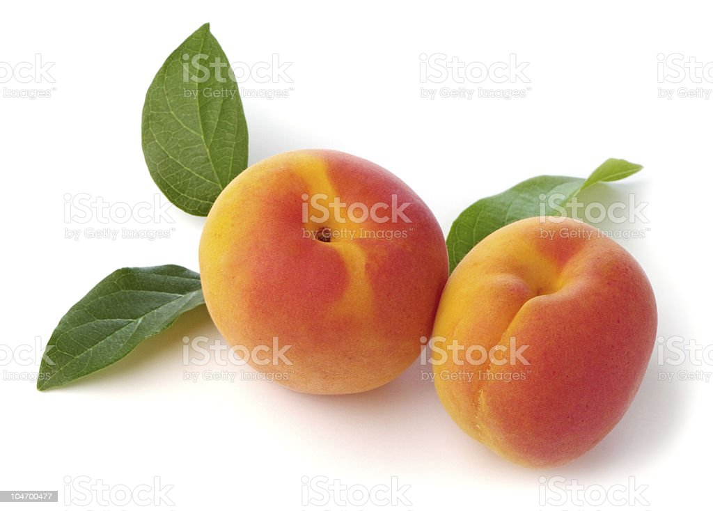 Apricots Fresh stock photo