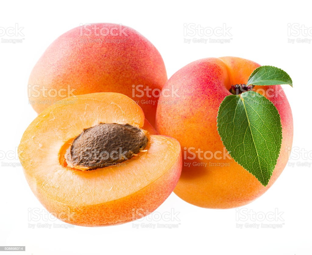 Apricots isolated on white. stock photo
