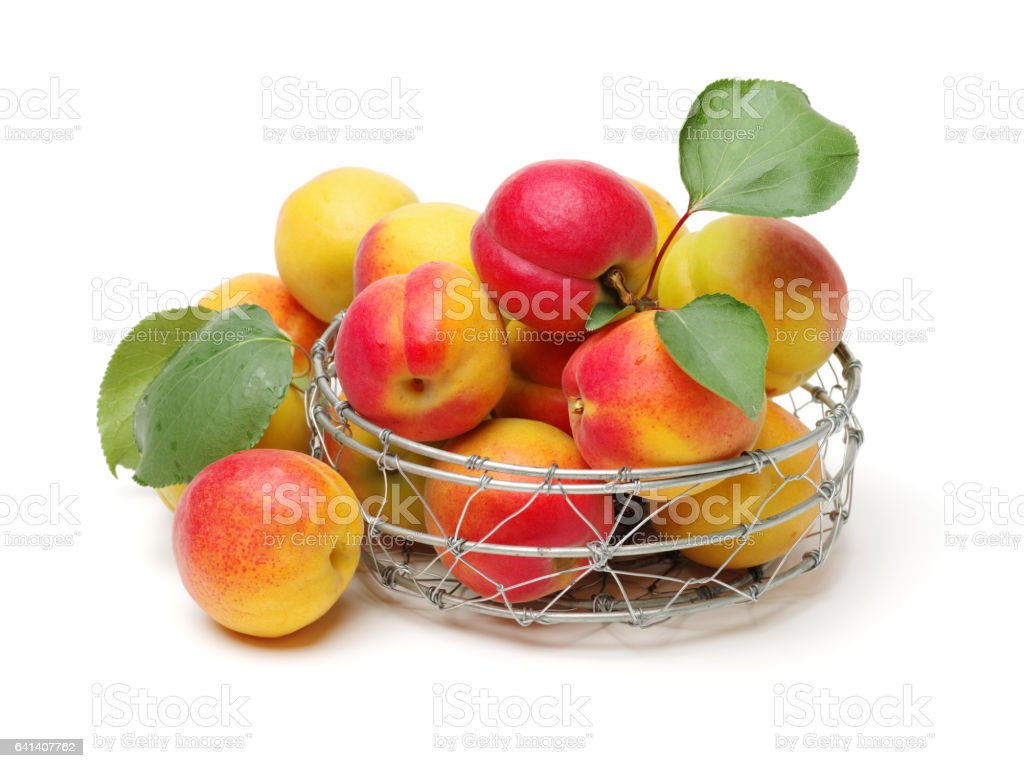 Apricots with leaves on a white background stock photo