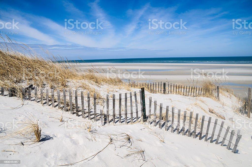 April on Mayflower Beach stock photo