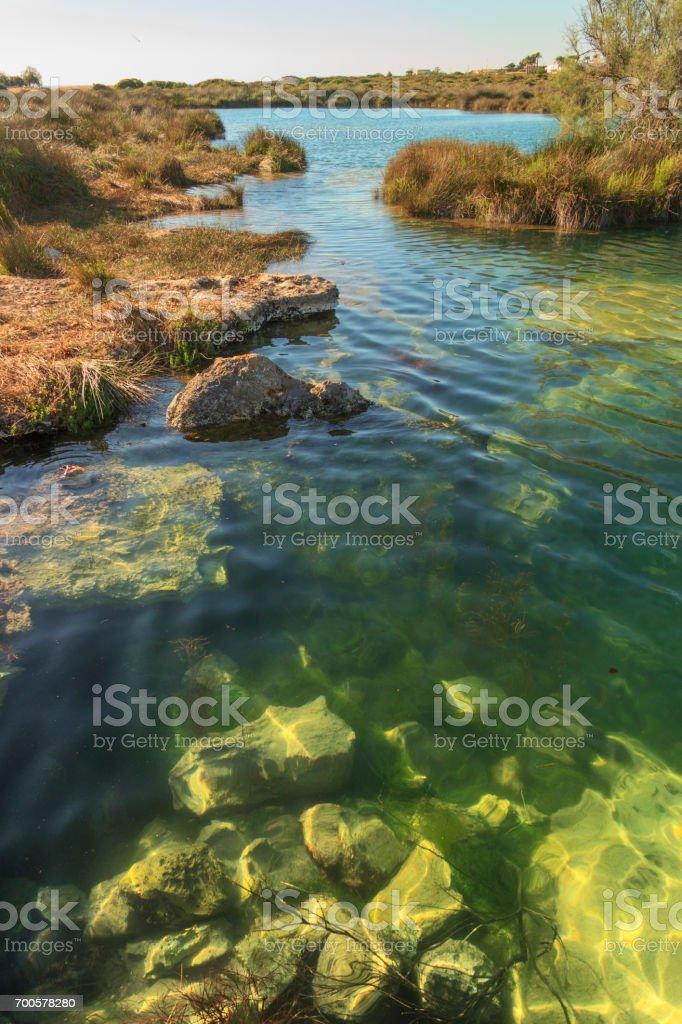 Apulia: Regional Natural Park Porto Selvaggio and Palude del Capitano. stock photo