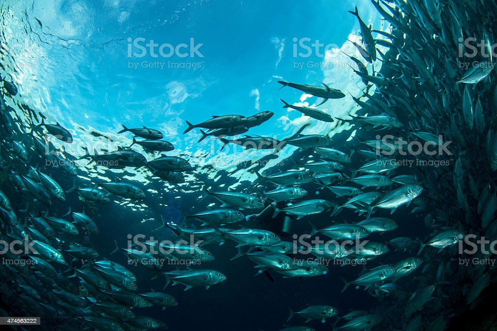 Aqua stock photo