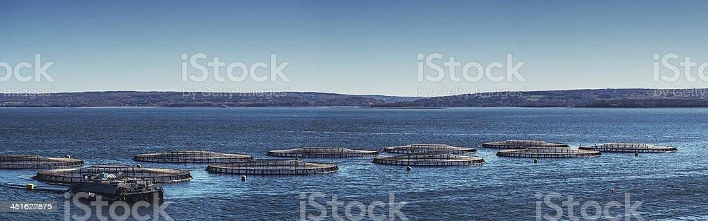 Aquaculture Panorama royalty-free stock photo