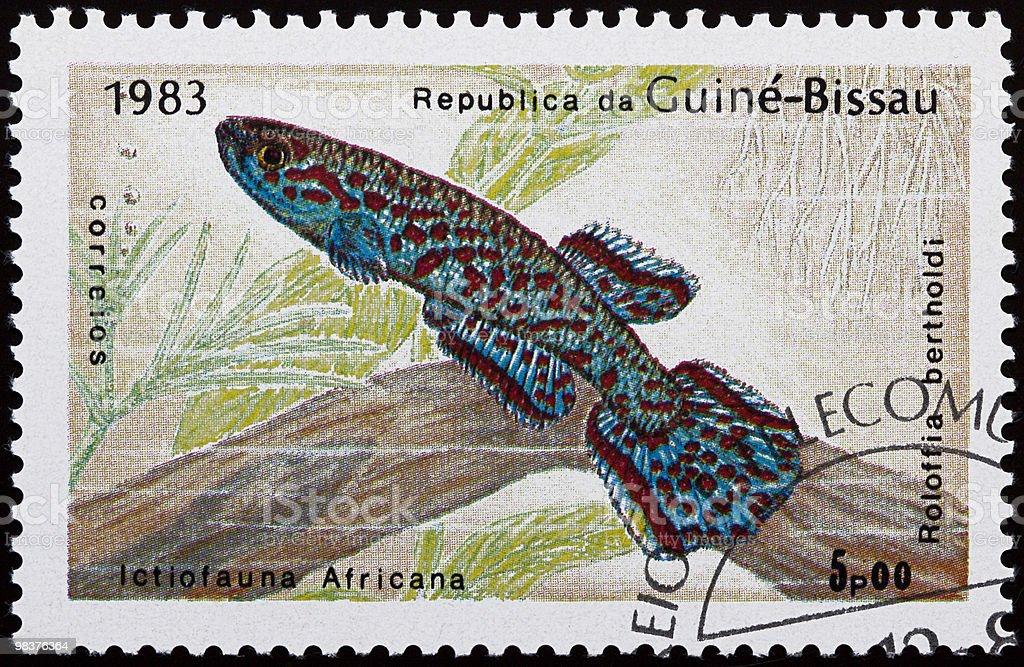Aquarium fish stamp stock photo