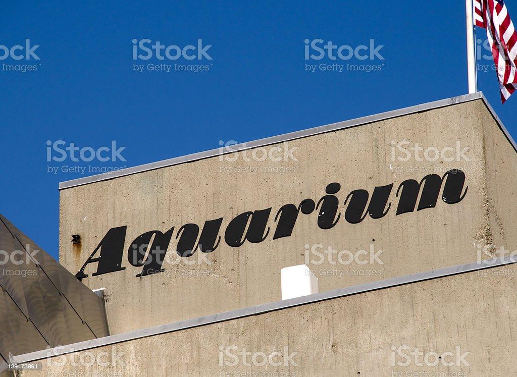 Aquarium in Boston stock photo