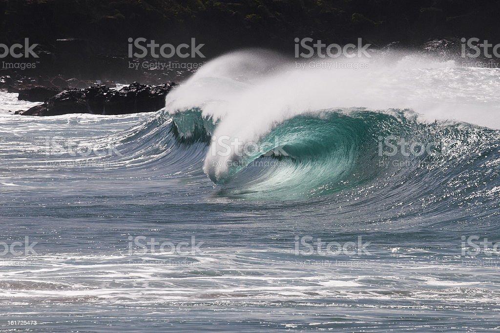 Aquascape royalty-free stock photo