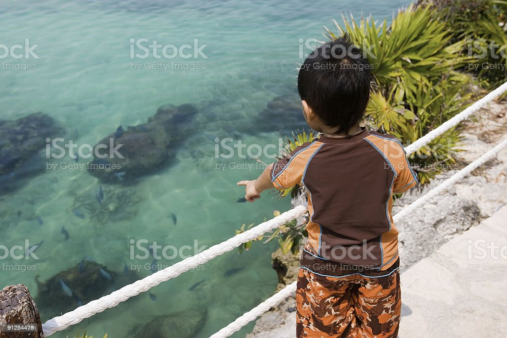 Aquatic Park, Little Boy Pointing at Tropical Fish, Copy Space royalty-free stock photo