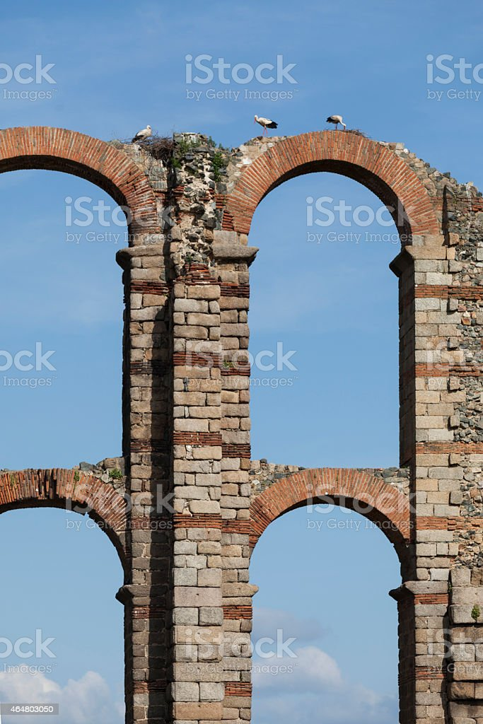 Aqueduct De Los Milagros in Spain with storks stock photo