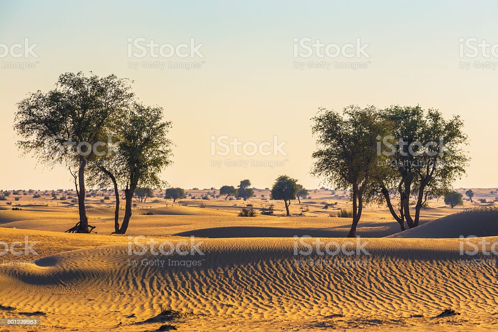 Arabian desert stock photo