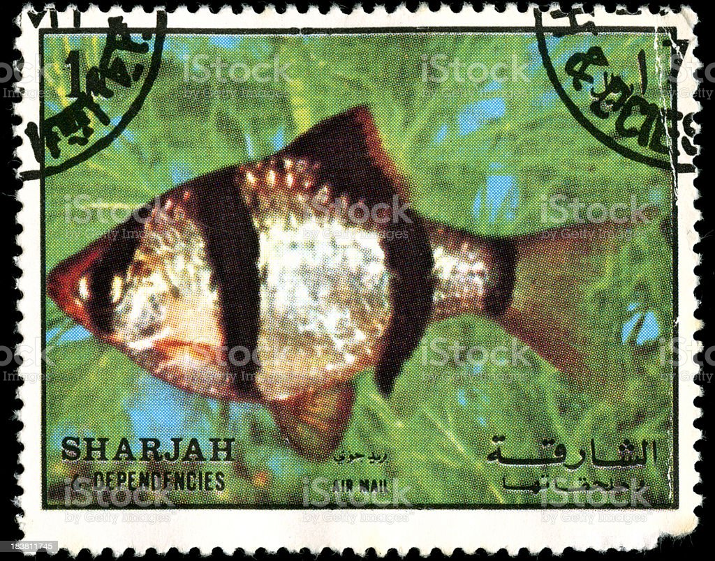 Arabic stamp from Sharjah royalty-free stock photo