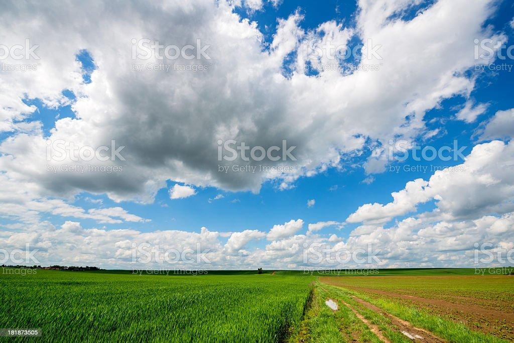 arable land royalty-free stock photo
