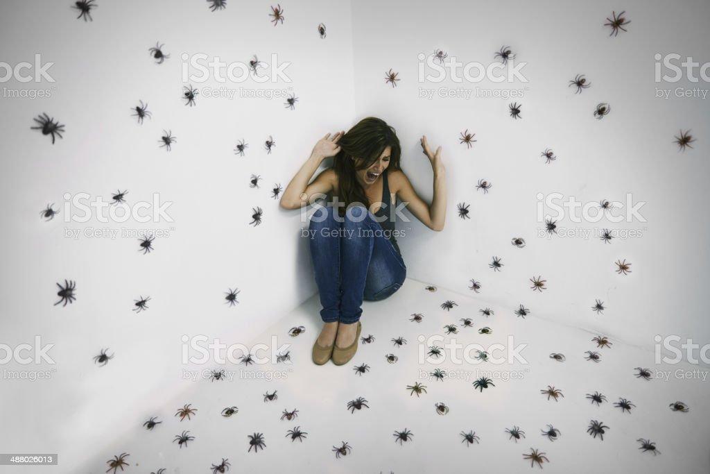 Arachnophobic's worst nightmare come true! stock photo