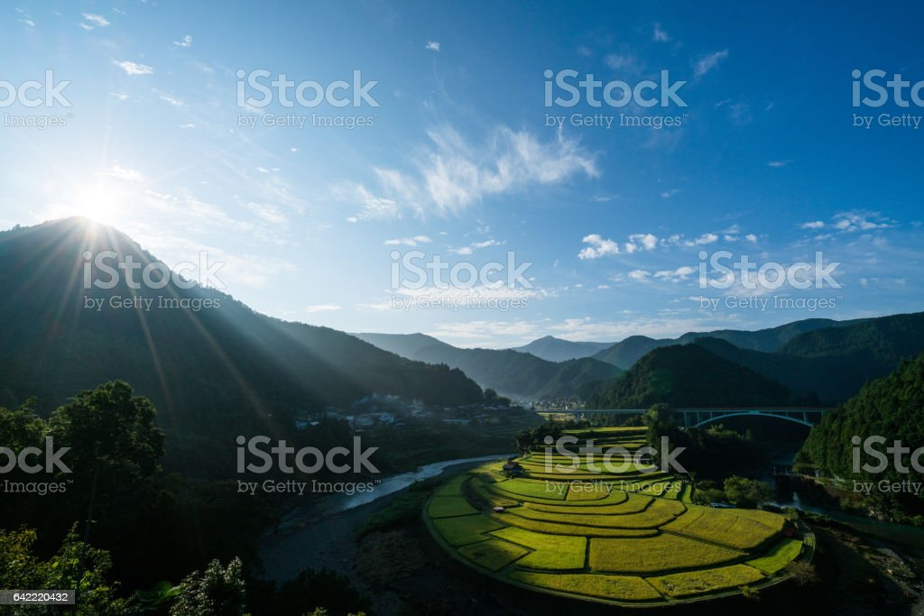 Aragishima rice terraced field,Wakayama,Japan ストックフォト