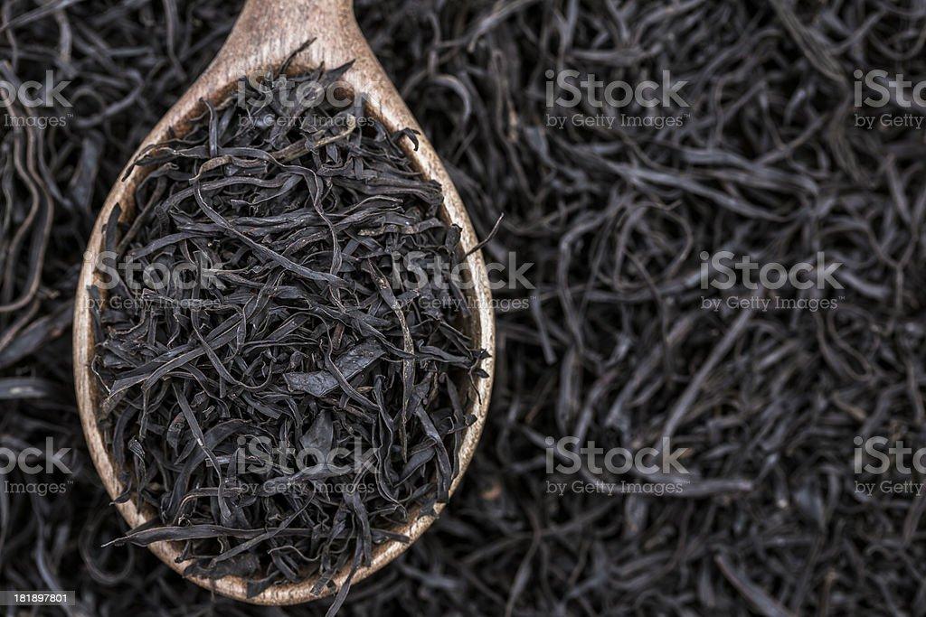 Arame seaweed royalty-free stock photo