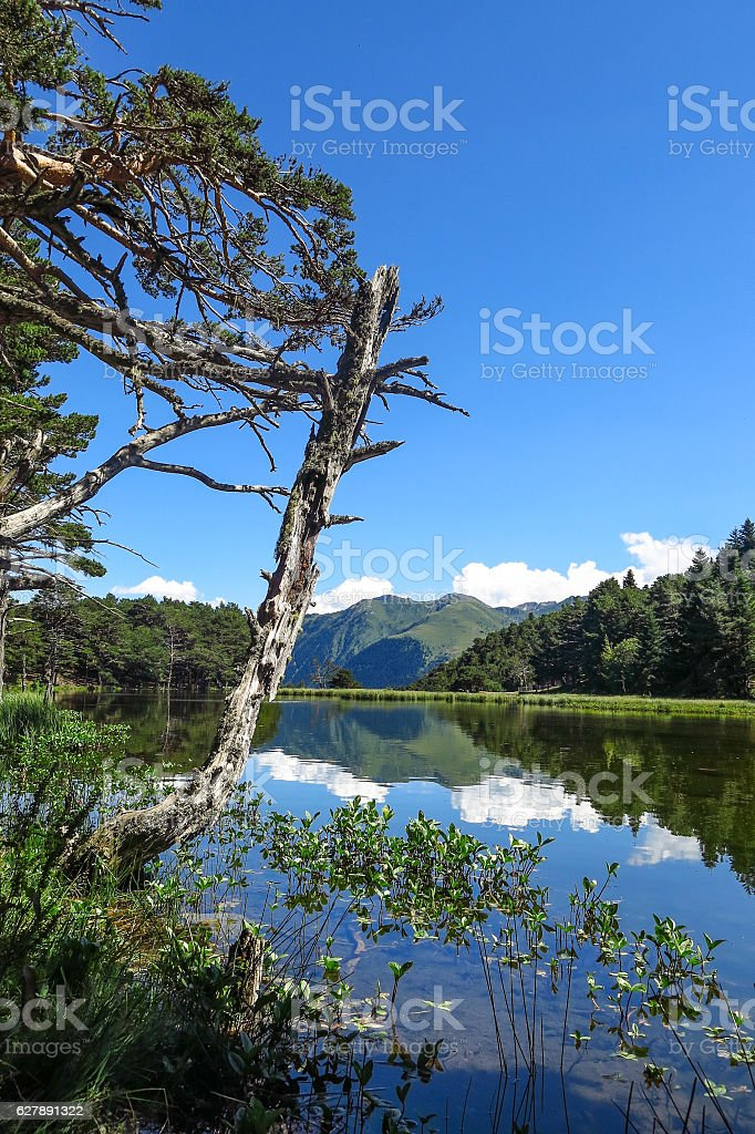 Aran valley in the Catalan Pyrenees, Spain stock photo