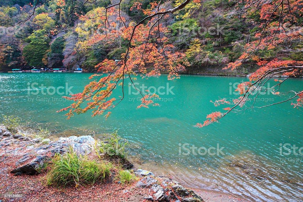 Arashiyama in autumn stock photo