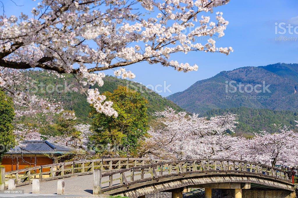 Arashiyama, Kyoto in Spring stock photo