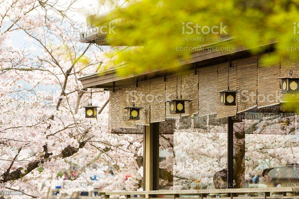 Arashiyama Park in Kyoto, Japan stock photo