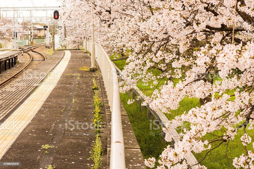 Arashiyama Station in Kyoto, Japan stock photo