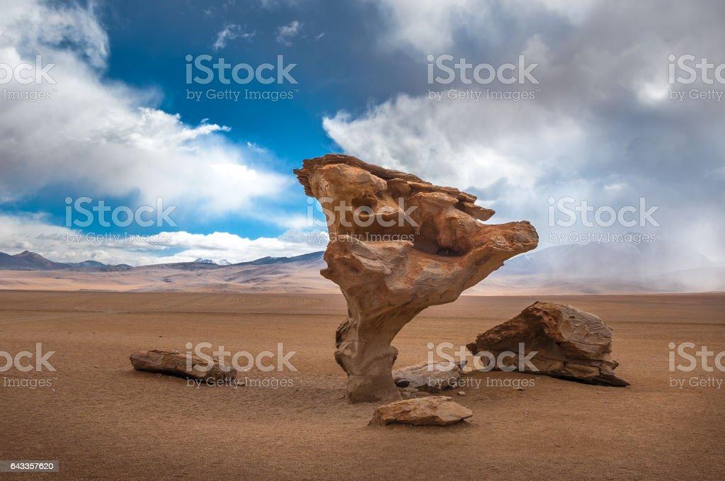 Arbol de piedra, stone tree, Bolivia stock photo