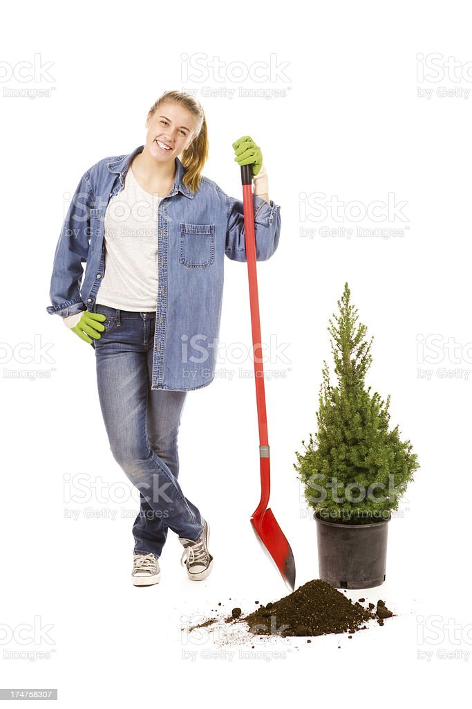 Arbor Day Tree Planting—Young Woman Landscape Gardener, White Backround royalty-free stock photo