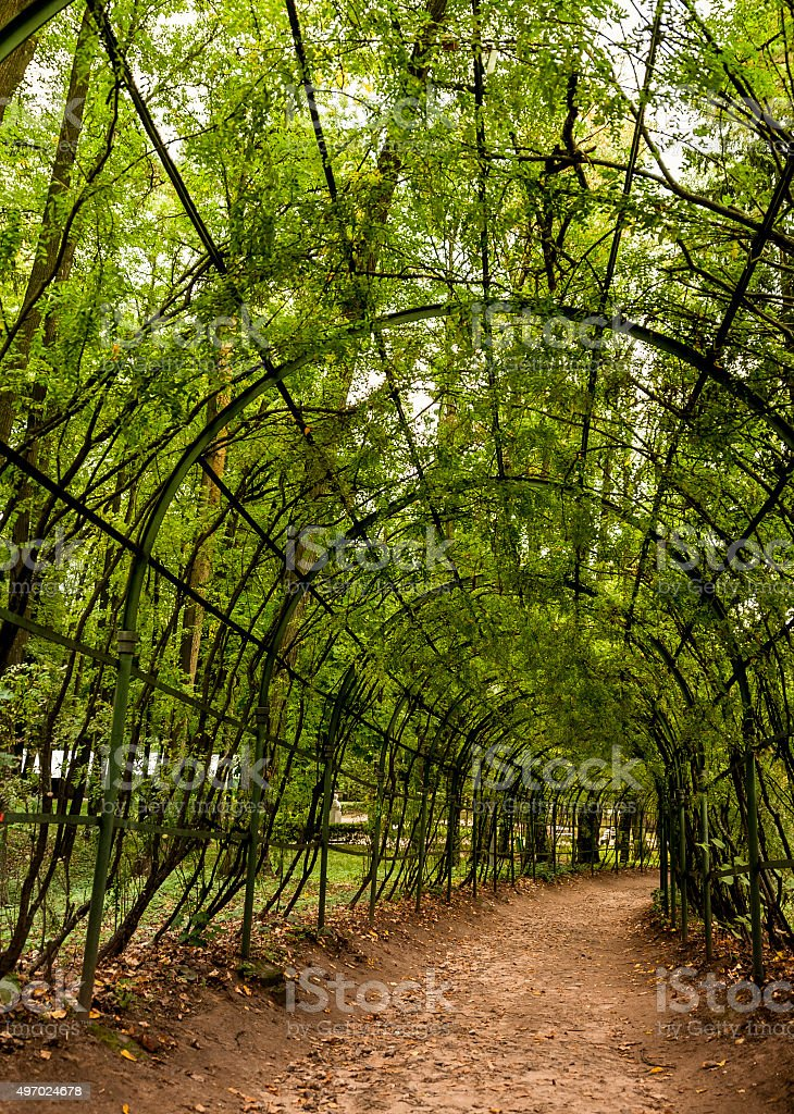 Arbor Pathway in a Russian Garden stock photo