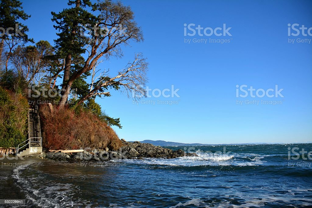 Arbutus Cove stock photo