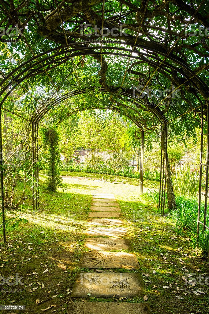 Arch green soft natural path walkway stock photo