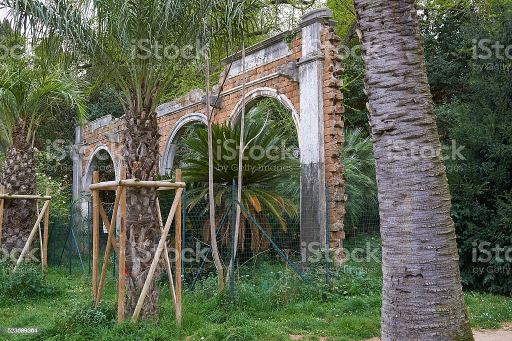 arch in park stock photo
