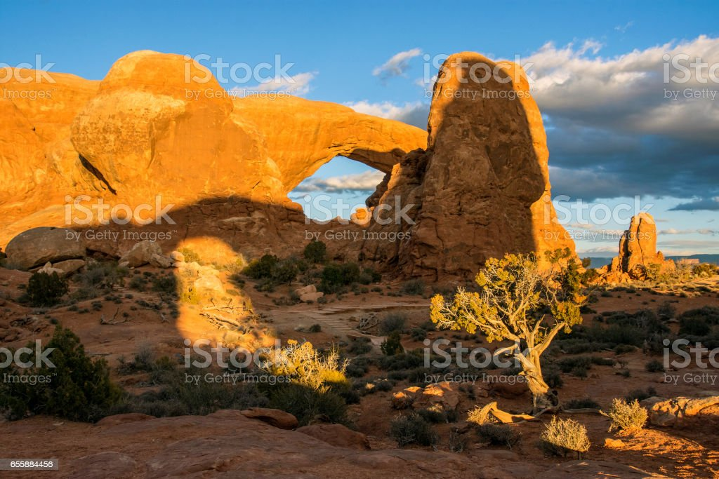 Arch, shadow, juniper stock photo