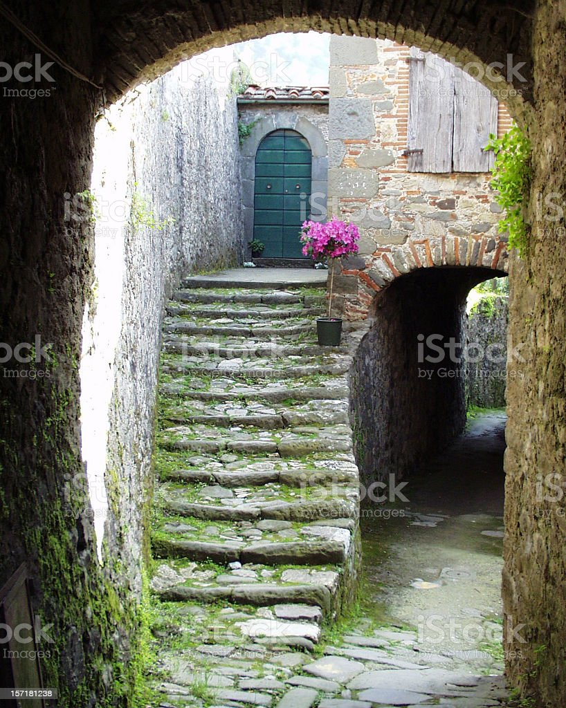 Arch, stairs, flowers and entrance door stock photo