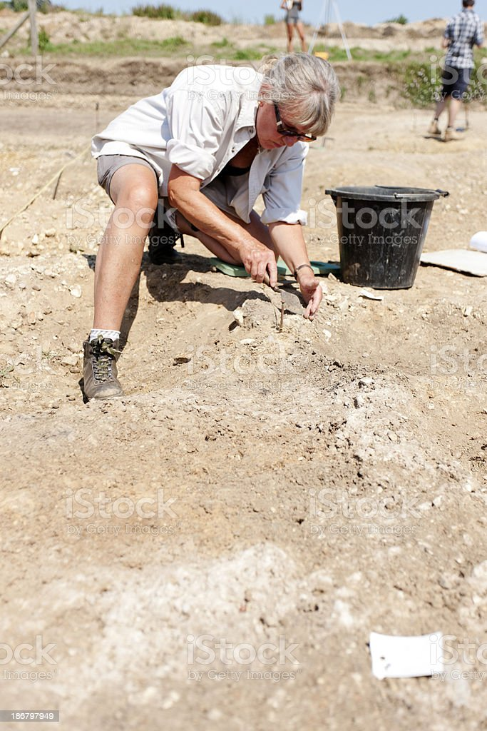 Archaeological dig royalty-free stock photo