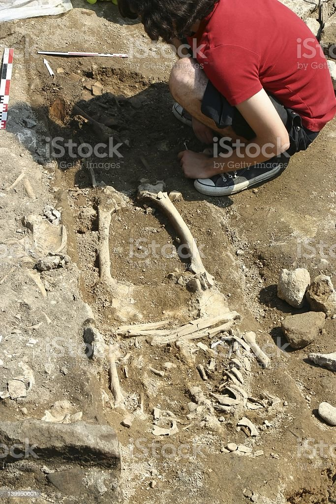 Archaeological research and discovery of bones royalty-free stock photo